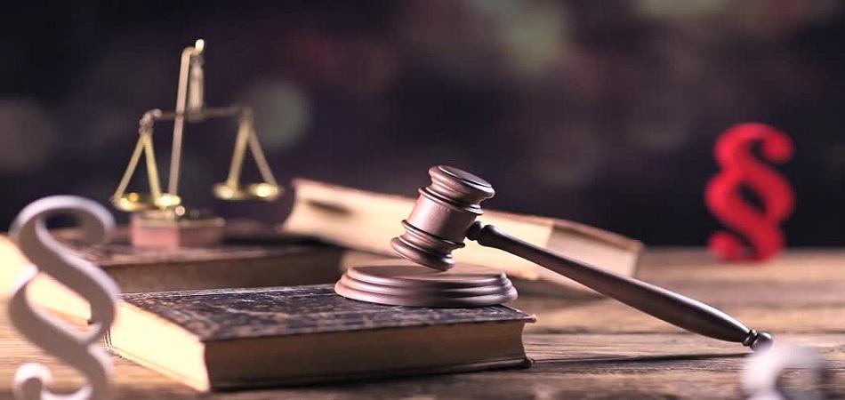 L'avocat, meilleur allié au quotidien